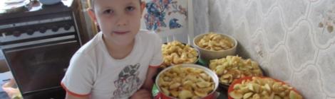 Как мы с внуком готовили яблочный сок